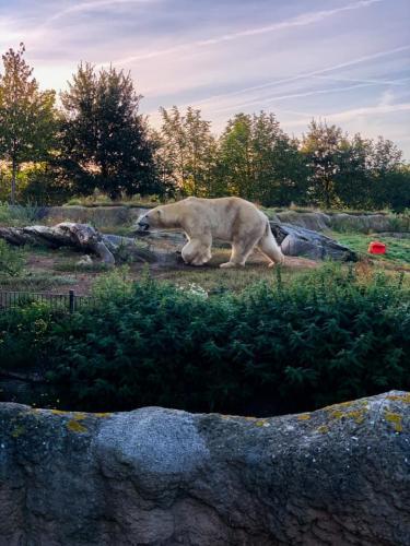 Grote Herfst Fotowedstrijd 2019